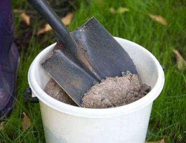 Как бороться с улитками и слизняками в саду и на огороде