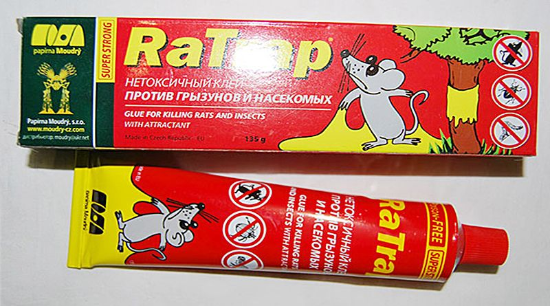 Клей для мышей: виды, правила использования