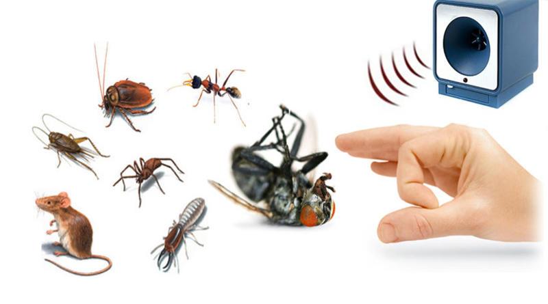 Выбираем ультразвуковой отпугиватель для борьбы с грызунами и насекомыми