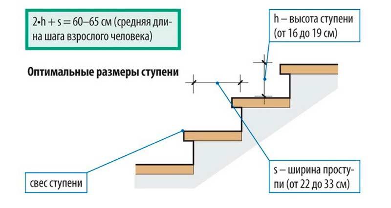lestnitsavtor (7)